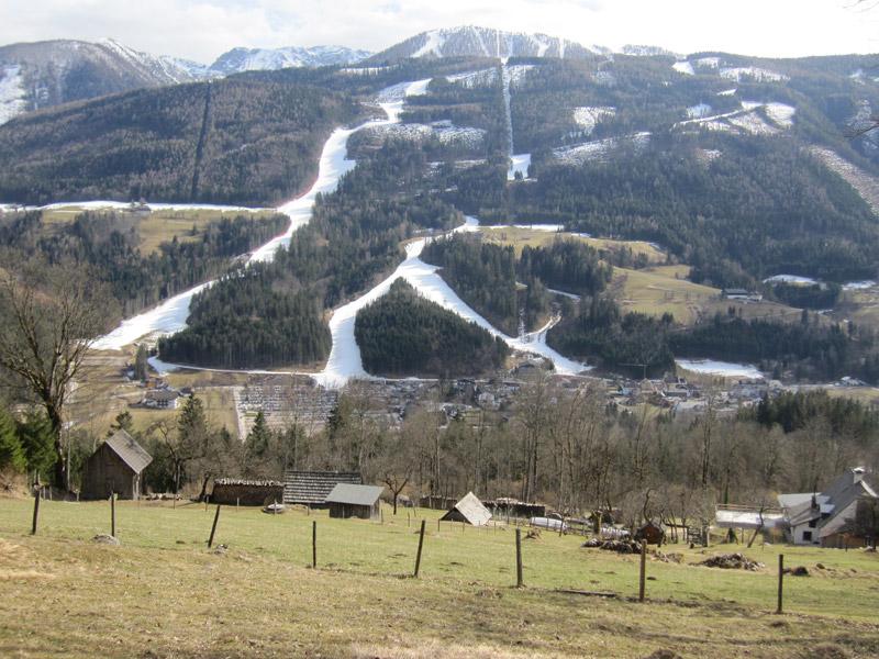 Hausfeld