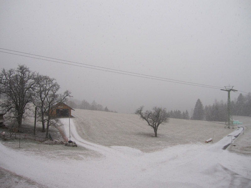 Erste-Schneefall-2011